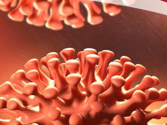 Informacije za bolesnike s kroničnim bolestima jetre